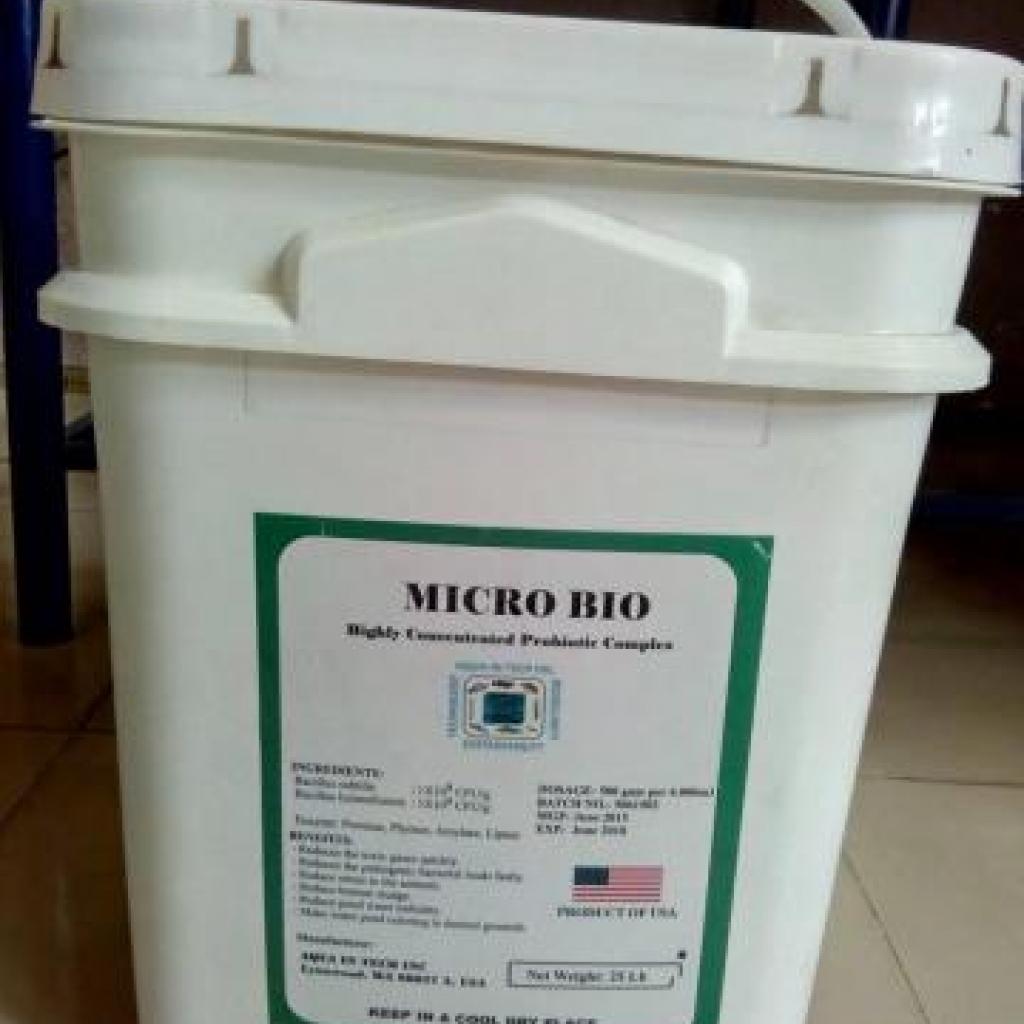 Microbio men vi sinh